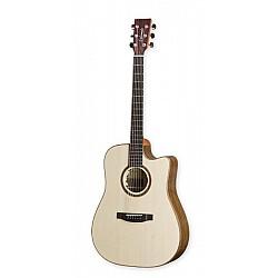 Lakewood D-18 CP - Akustická gitara