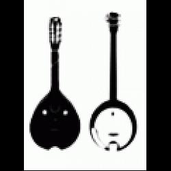 Ostatné struny: mandolína, banjo...