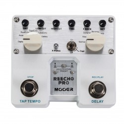 Mooer Reecho Pro, Digital Delay Pedal