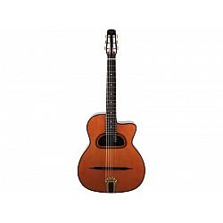 Špeciálne gitary